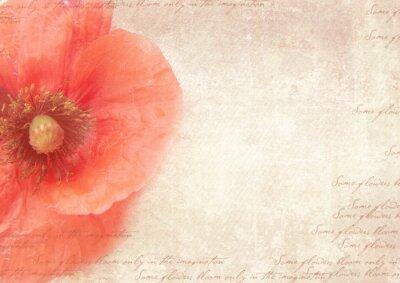 Картина Шероховатый ретро фон с цветами мака. Урожай стиле коллаж с цветами мака, исчез почерк на потертой старой бумаги. Открытка шаблон.