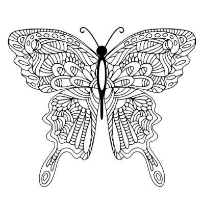 Картина Ручной обращается рисунок бабочки