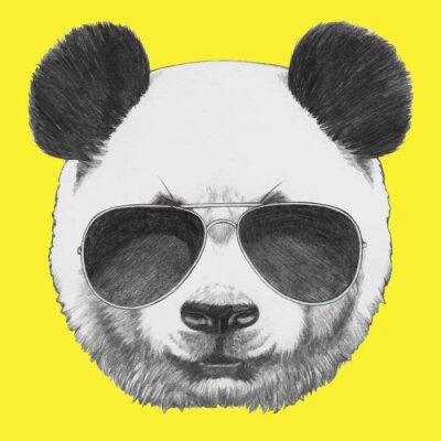 Картина Ручной обращается портрет Panda с очками. Вектор изолированных элементов.