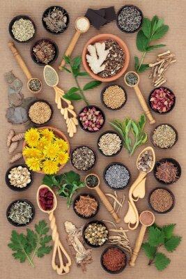 Картина Травы Здоровье женщин