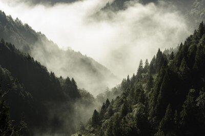 Картина Высокие горы в тумане и облака