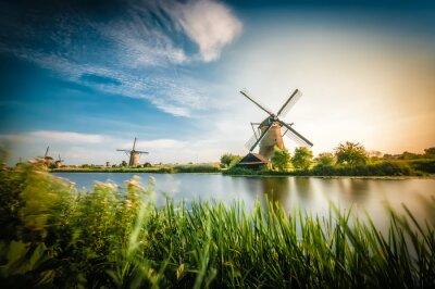 Картина Историки голландские ветряные мельницы в районе Роттердама