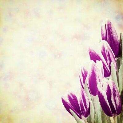 Картина Праздник Урожай Цветочные фон