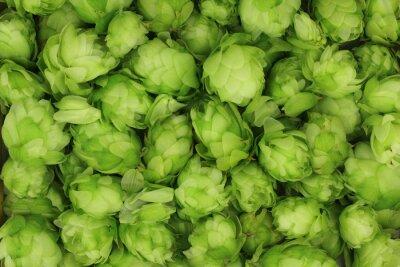 Картина шишки хмеля зеленый абстрактный фон