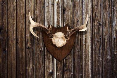 Картина Рога на деревянной стене