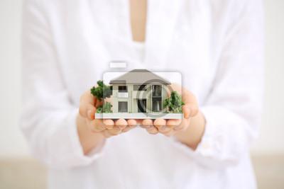 Картина 住宅 模型 · 手 の 平