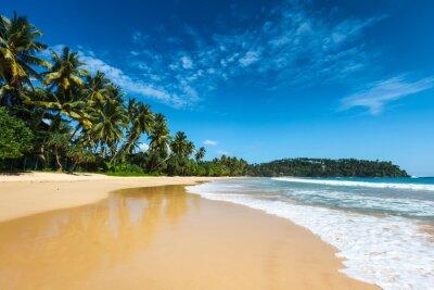 Картина Идиллический пляж. Шри Ланка