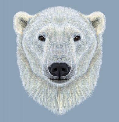 Картина Иллюстрированный Портрет белого медведя