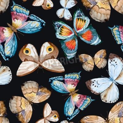 Картина иллюстрированный акварель бабочки