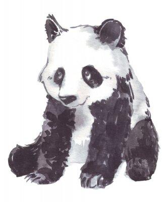 Картина иллюстрация рисунок панды