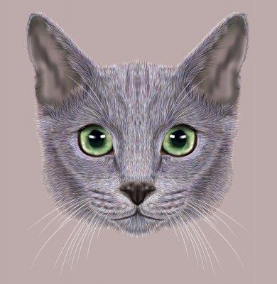 Картина Иллюстрация Портрет русской голубой кошки. Симпатичные домашняя кошка с зелеными глазами.