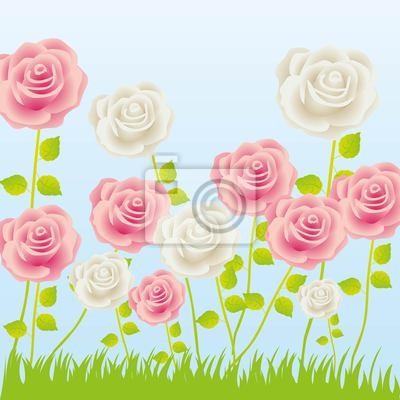 Иллюстрация из роз