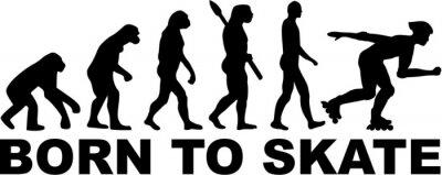 Картина Катания на роликовых коньках Evolution