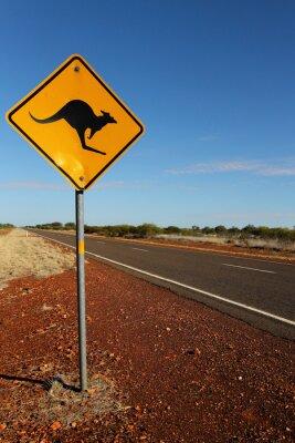 Картина Кенгуру Вход в Южной Австралии