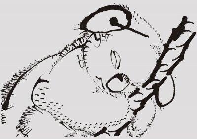 Картина Коала, MIS, Eukaliptus