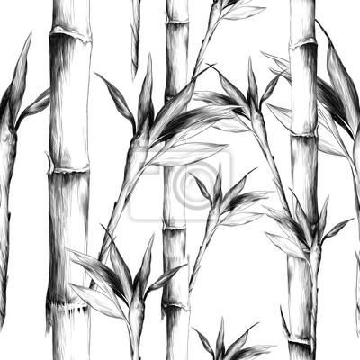 Картина листья ветви стебель бамбук узор цветы текстура рамка бесшовный эскиз векторная графика монохромный черно-белый рисунок