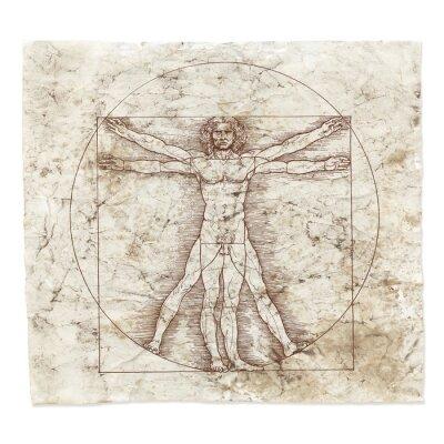 Картина Леонардо да Винчи