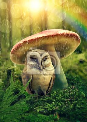 Маленькая сова под грибом