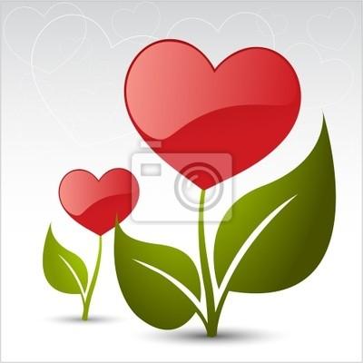 любовь цветы