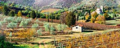 Картина Волшебные осенние пейзажи в сельской местности Тосканы. Виноградный регион Италии