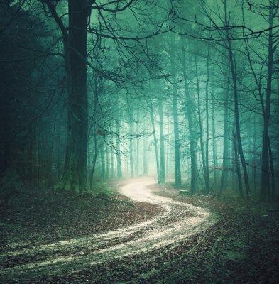 Картина Магия цвета осеннего леса дорога. Мечтательный bllue зеленого цвета туманно местности лесных деревьев с извилистой дороге фон. Фэнтези цветные леса. Цветовой эффект фильтр, используемый.