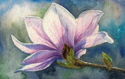 Картина Магнолия в цвету на branch.Watercolors.
