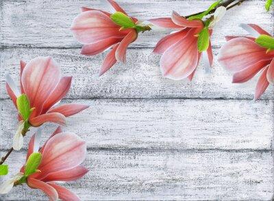 Картина цветы магнолии на фоне ветхих деревянных досок