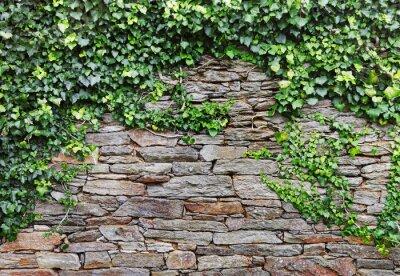 Картина Стена