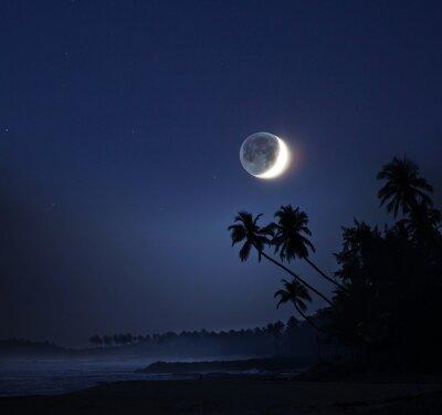 Картина Лунный свет