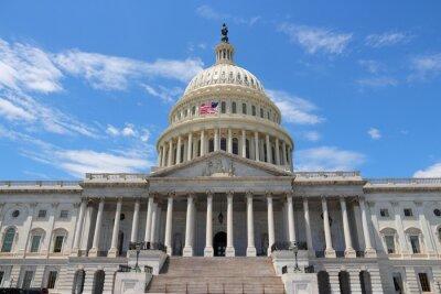Картина Национальный Капитолий, Вашингтон, округ Колумбия