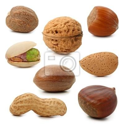 Орехи коллекции, изолированных на белом фоне