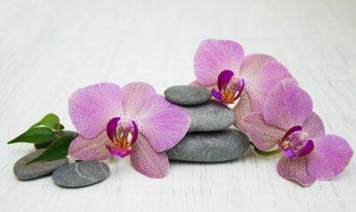 Картина Орхидеи и массаж камнями