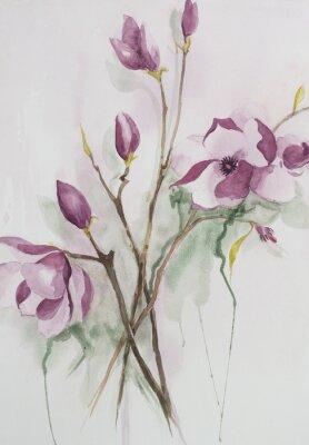 Картина Оригинальный акварель, цветы магнолии.