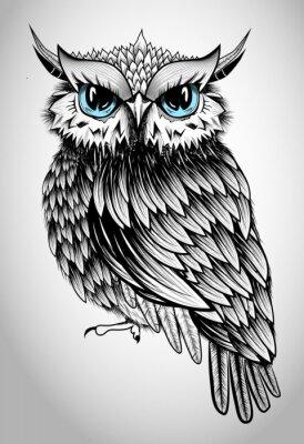 Картина Owl Lady - beautiful vector illustration