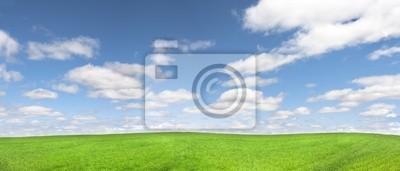 Картина панорама