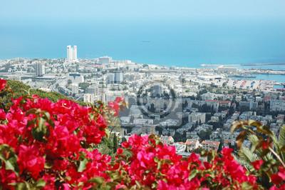 Панорама современного города Хайфа, Израиль