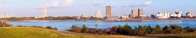 Картина Панорамный Батон-Руж