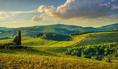 Картина Panzano in Chianti vineyard and panorama at sunset. Tuscany, Italy