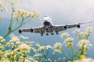 Картина Пассажирский коммерческий самолет летит над полями цветов в аэропорту.
