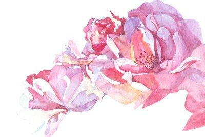 Картина розовый фон акварель иллюстрации
