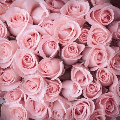 Картина розовая роза букет старинные фон