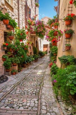 Картина Крыльцо в небольшом городке в Италии в солнечный день, Умбрия