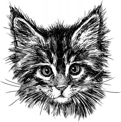 Картина портрет кошки