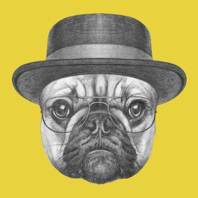 Картина Портрет французского бульдога в шляпе и очках. Ручной обращается иллюстрации.
