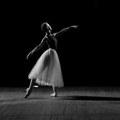 Картина Портрет молодой красивой балерины