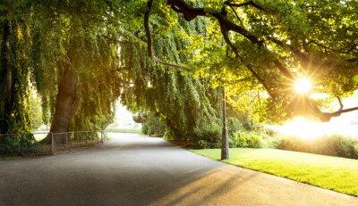 Картина Прогулка в красивом городском парке