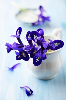 Картина Фиолетовый Ирис цветы в старинных чашки