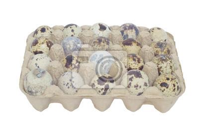 Перепелиные яйца в упаковке на белом фоне