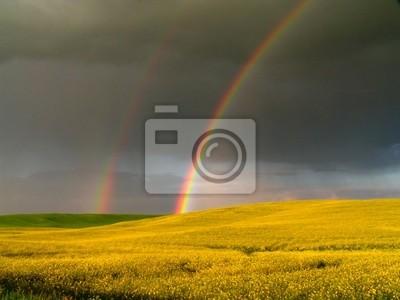 Картина радуги