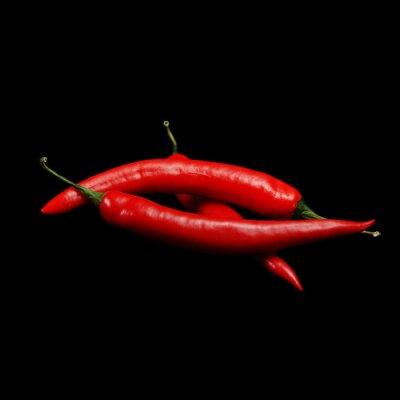 Картина красный острый перец чили